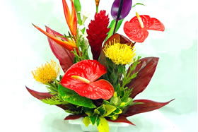 A Special Touch Florists Serving Lahaina And West Maui