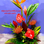 "DAILY TROPICAL SPECIAL 24"" tall X 19 Across"
